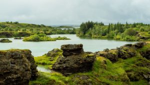 iceland forests and lakes